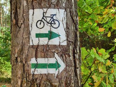 Val Rendena - Giudicarie Centrali cycle track