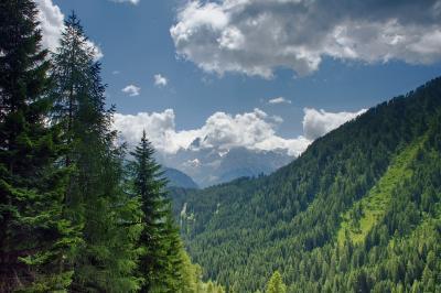 Adamello Brenta Nature Park
