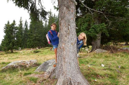 Esperienza top: Dolomiti Natural Family Pineta - mercoledì
